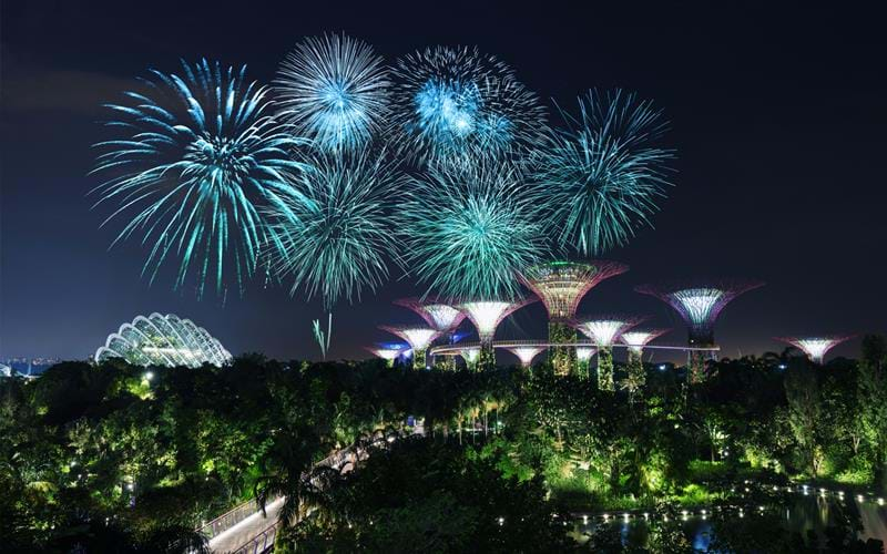 Firework display over Singapore's famous gardens