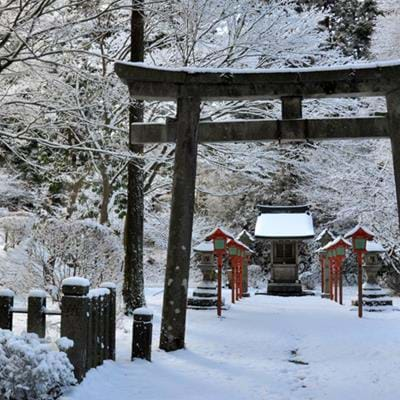 6 unique reasons to make Japan your best winter holiday yet
